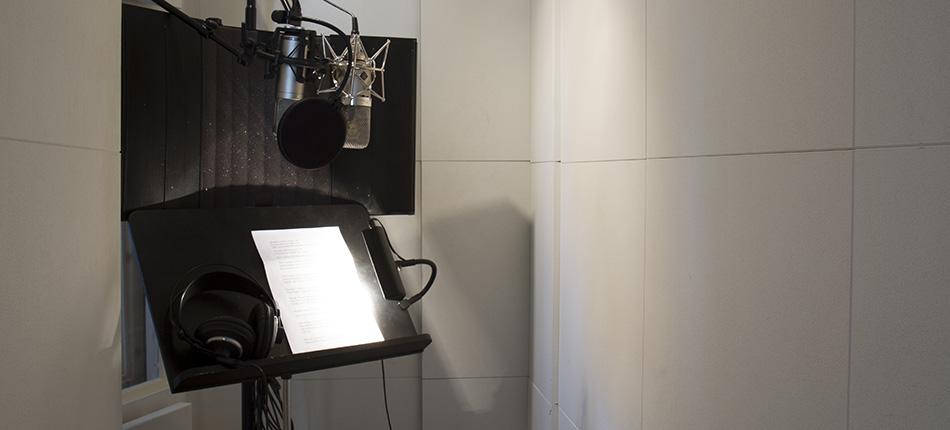 Voicebox950